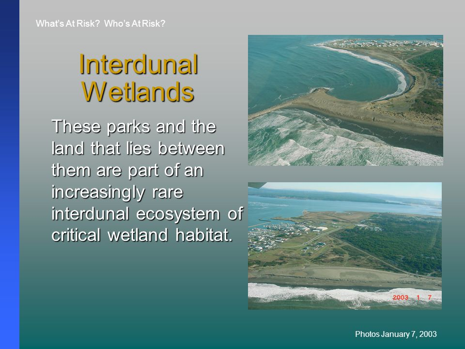 Interdunal Wetlands These parks and the land that lies between them are part of an increasingly rare interdunal ecosystem of critical wetland habitat.