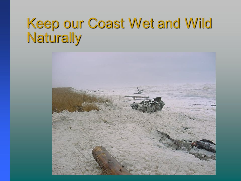 Keep our Coast Wet and Wild Naturally