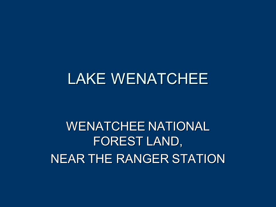 LAKE WENATCHEE WENATCHEE NATIONAL FOREST LAND, NEAR THE RANGER STATION