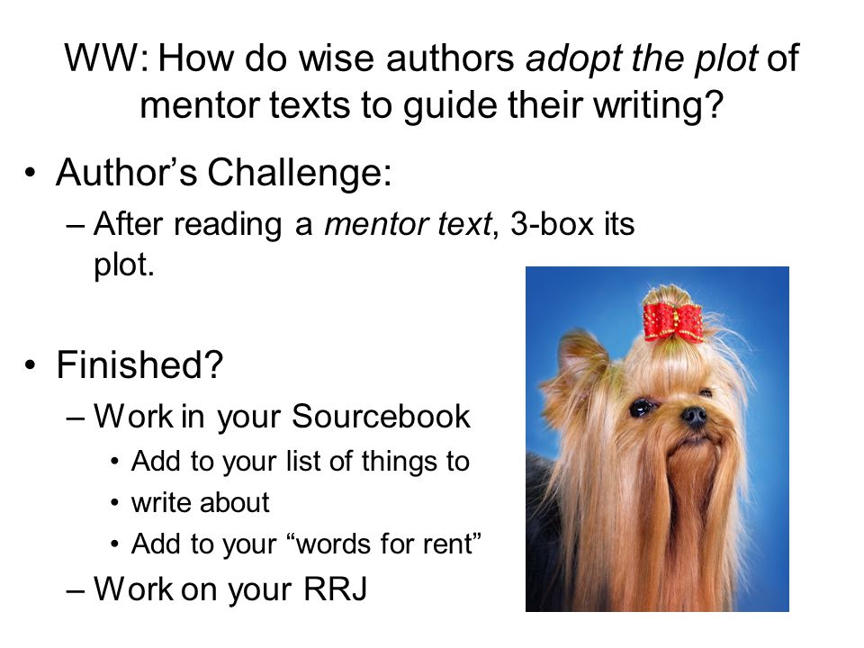 WW: How do wise authors adopt the plot of mentor texts to guide their writing.