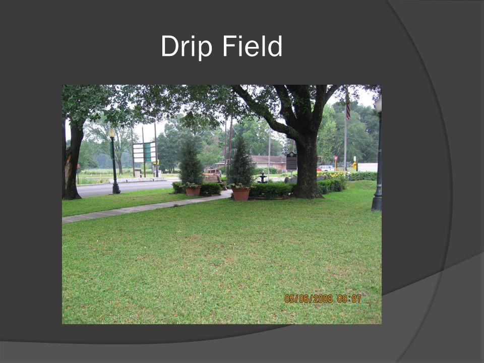 Drip Field