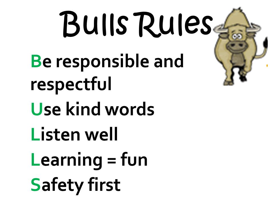 Bulls Rules Be responsible and respectful Use kind words Listen well Learning = fun Safety first