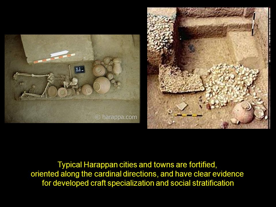 Typical Harappan cities and towns are fortified, oriented along the cardinal directions, and have clear evidence for developed craft specialization and social stratification
