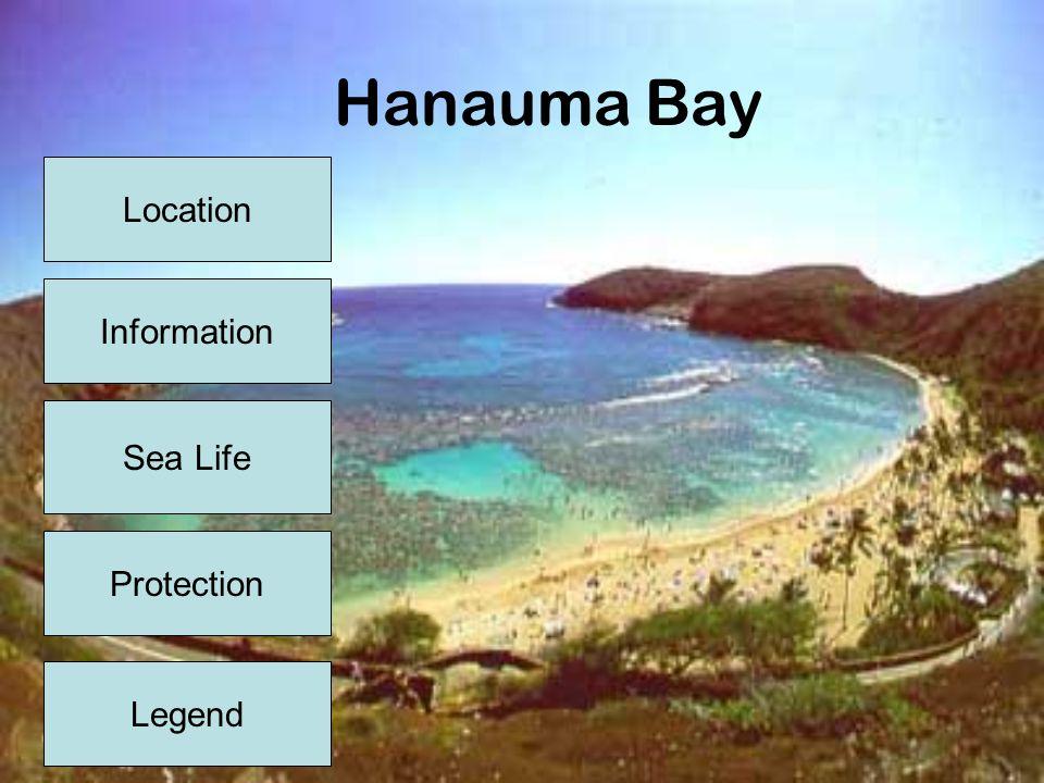 Location Hanauma Bay is located about 10 miles east of Waikiki just off the main coastal road (Kalaniana'ole Highway, Route 72) Menu