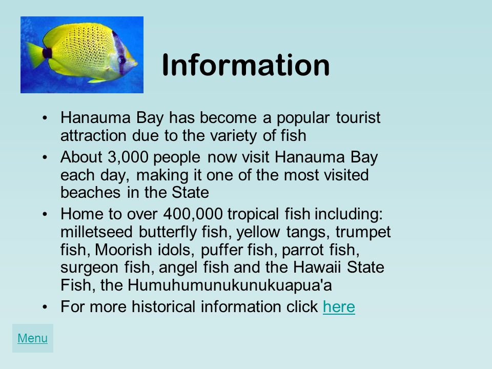 Information Hanauma Bay has become a popular tourist attraction due to the variety of fish About 3,000 people now visit Hanauma Bay each day, making it one of the most visited beaches in the State Home to over 400,000 tropical fish including: milletseed butterfly fish, yellow tangs, trumpet fish, Moorish idols, puffer fish, parrot fish, surgeon fish, angel fish and the Hawaii State Fish, the Humuhumunukunukuapua a For more historical information click herehere Menu