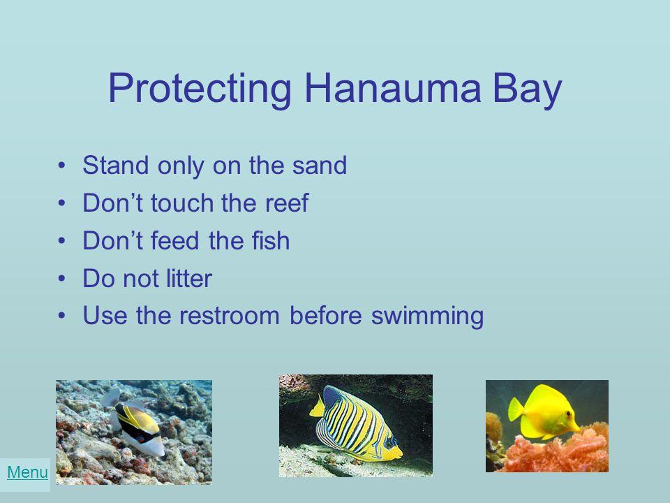 Protecting Hanauma Bay Stand only on the sand Don't touch the reef Don't feed the fish Do not litter Use the restroom before swimming Menu
