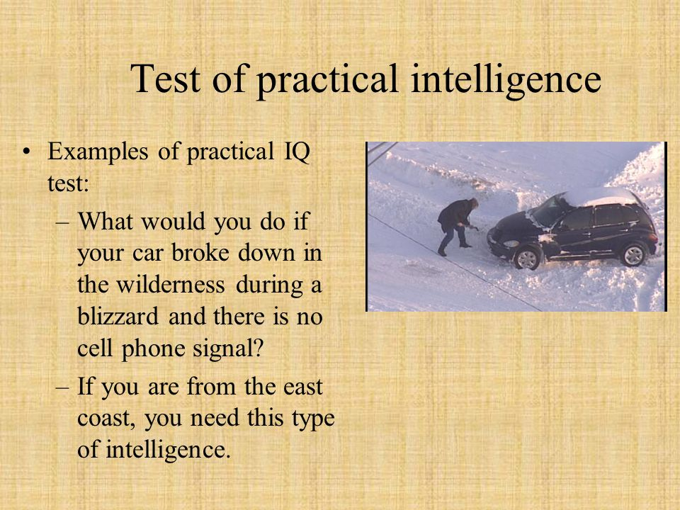 Test of practical intelligence Examples of practical IQ test: –What would you do if your car broke down in the wilderness during a blizzard and there is no cell phone signal.