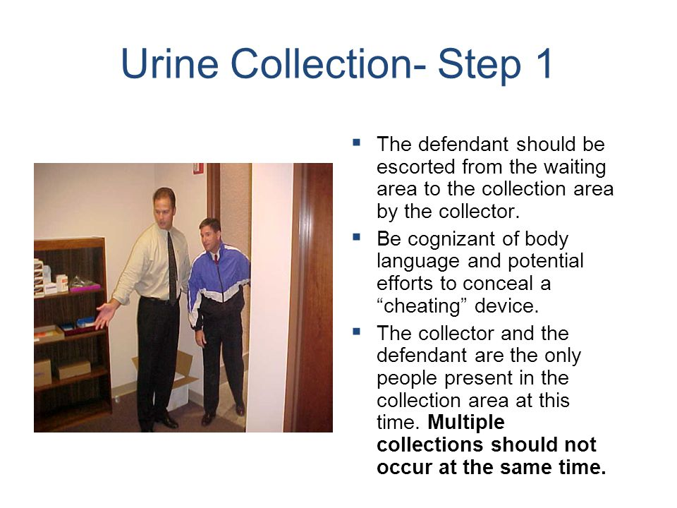 Urine Collection- Step 1   The defendant should be escorted from the waiting area to the collection area by the collector.   Be cognizant of body