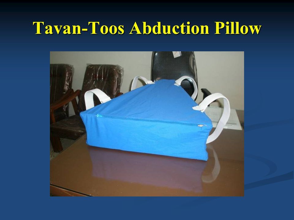 Tavan-Toos Abduction Pillow