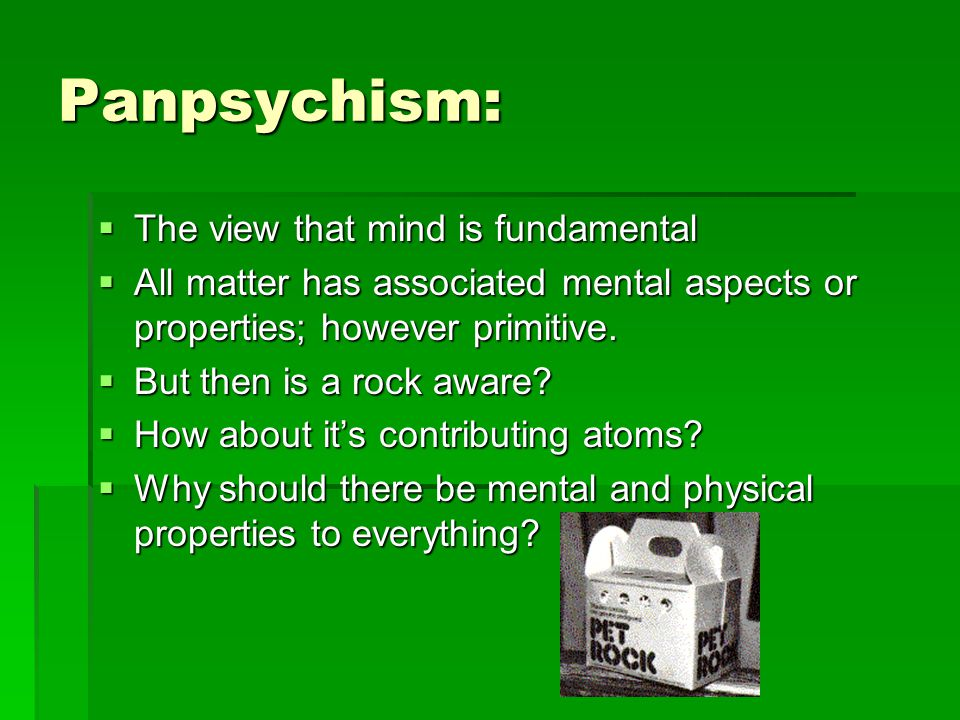 Panpsychism:  The view that mind is fundamental  All matter has associated mental aspects or properties; however primitive.
