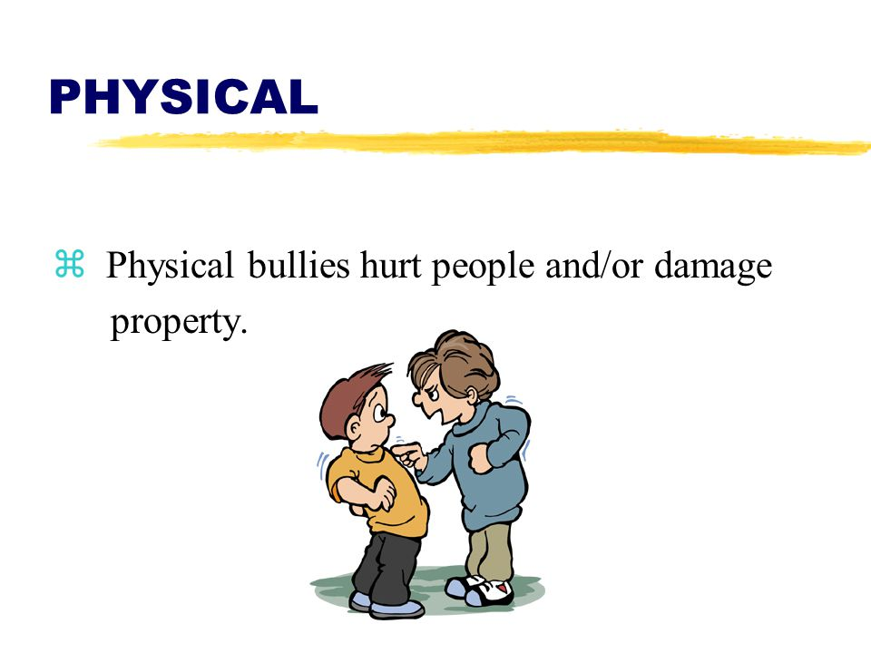 PHYSICAL z Physical bullies hurt people and/or damage property.