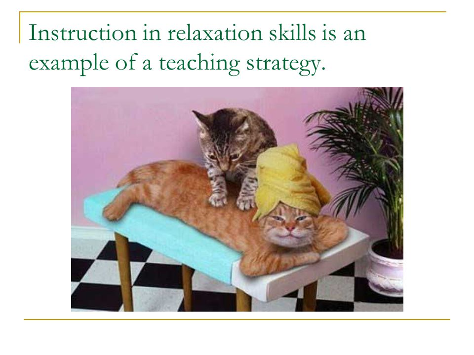 Types of Teaching and Competence Strategies: A. Peer-mediated strategies B. Teacher-mediated strategies