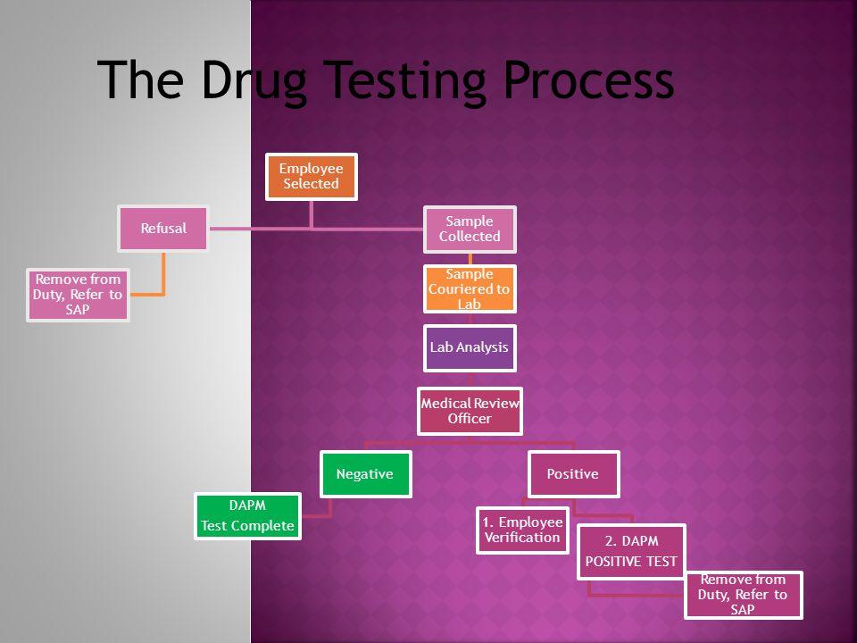 The Drug Testing Process
