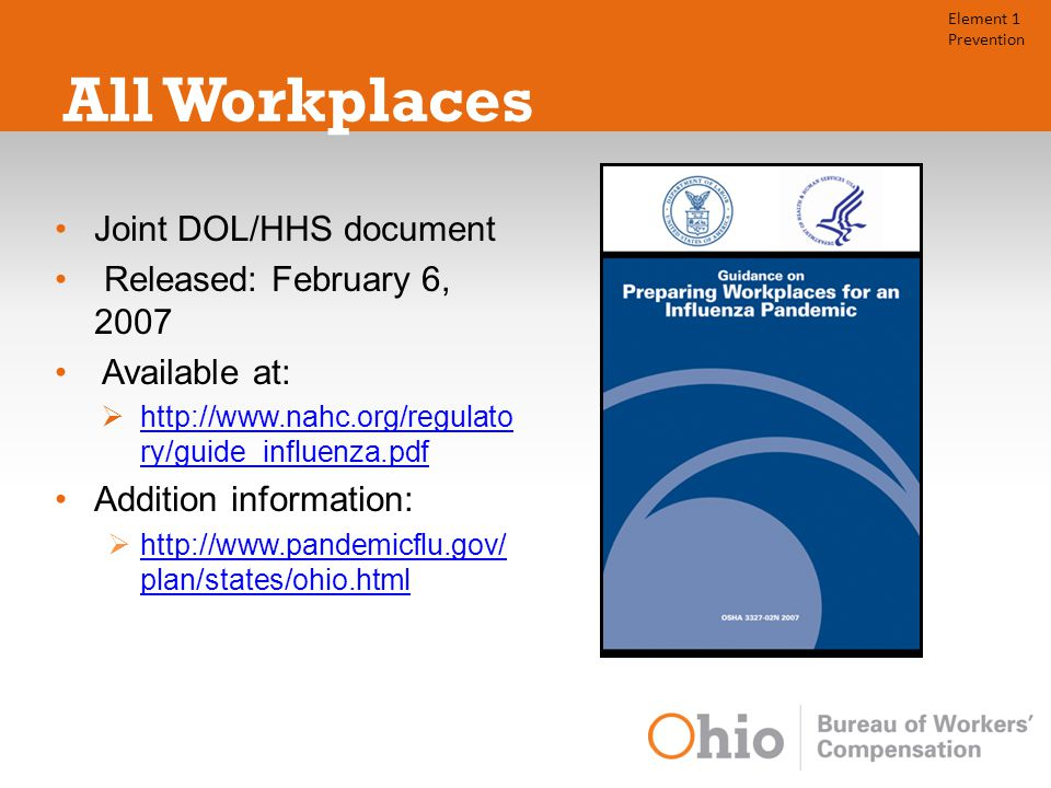 All Workplaces Joint DOL/HHS document Released: February 6, 2007 Available at:  http://www.nahc.org/regulato ry/guide_influenza.pdf http://www.nahc.org/regulato ry/guide_influenza.pdf Addition information:  http://www.pandemicflu.gov/ plan/states/ohio.html http://www.pandemicflu.gov/ plan/states/ohio.html Element 1 Prevention