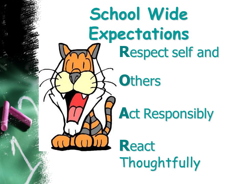 School Wide Expectations espect self and R espect self and O thers A ct Responsibly R eact Thoughtfully