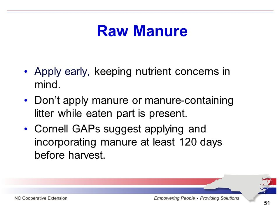 Raw Manure Apply early, keeping nutrient concerns in mind. Don't apply manure or manure-containing litter while eaten part is present. Cornell GAPs su
