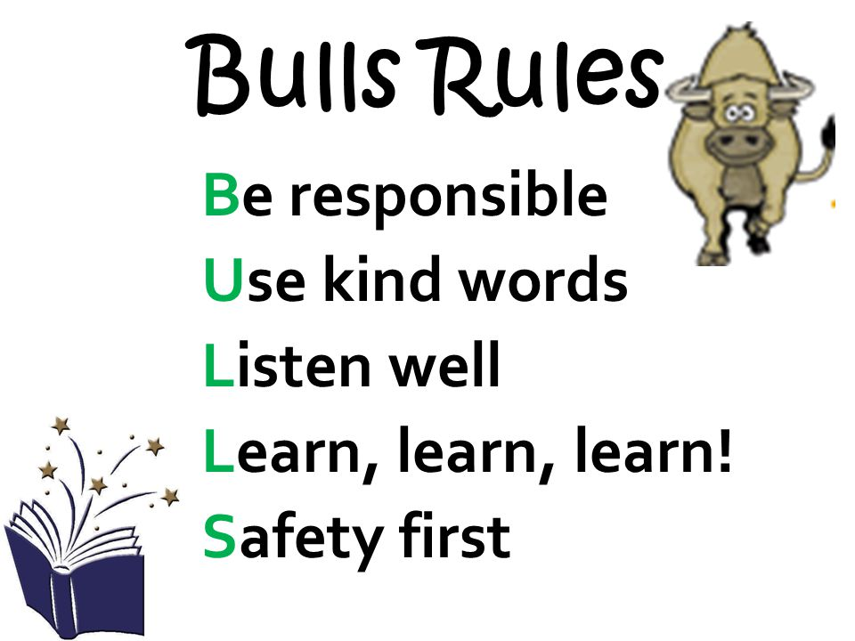Bulls Rules Be responsible Use kind words Listen well Learn, learn, learn! Safety first