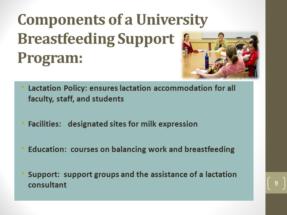 Components of a University Breastfeeding Support Program: Lactation Policy: ensures lactation accommodation for all faculty, staff, and students Facil