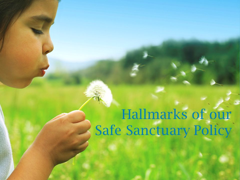 Hallmarks of our Safe Sanctuary Policy