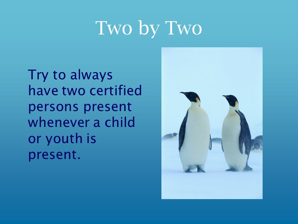 Two by Two Try to always have two certified persons present whenever a child or youth is present.