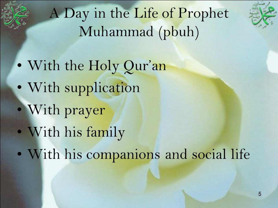 6 Prophet's (pbuh) Worship Life About 1/3 of every day spent in individual or congregational prayers.
