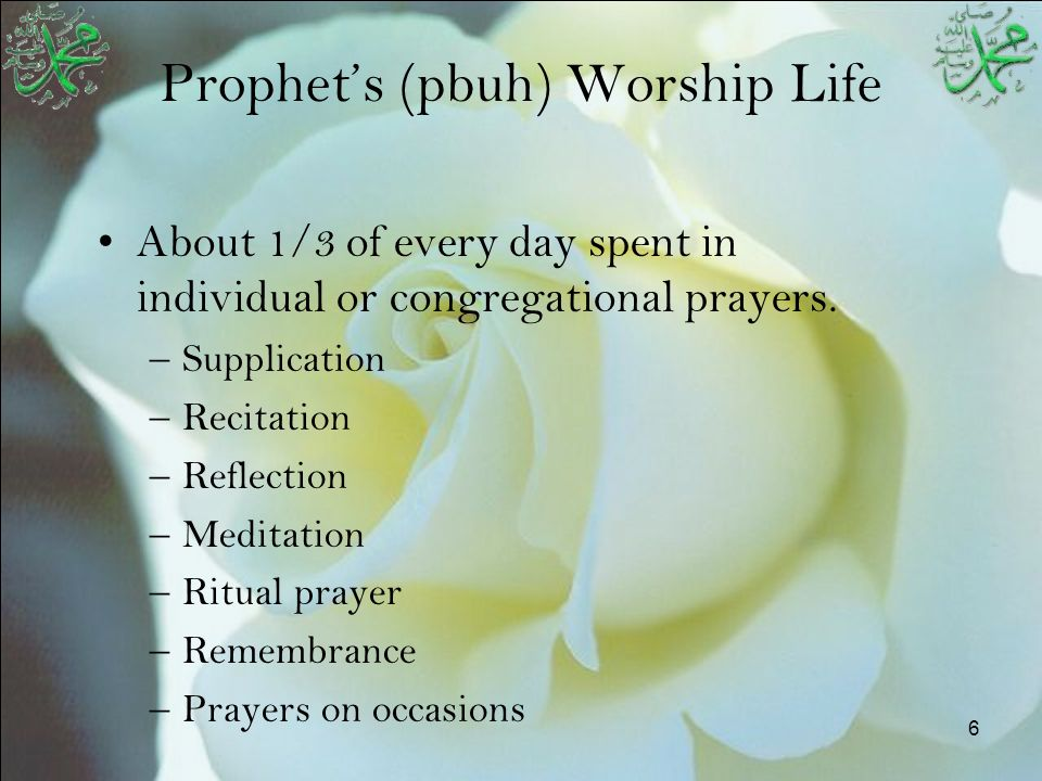 17 A Typical Day in Prophet's (pbuh) Life Breakdown of time spent in various Activities in a typical day of Prophet Muhammed (Peace and blessings be upon him)