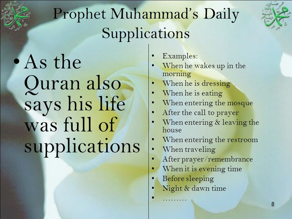 8 Prophet Muhammad's Daily Supplications As the Quran also says his life was full of supplications Examples: When he wakes up in the morning When he i