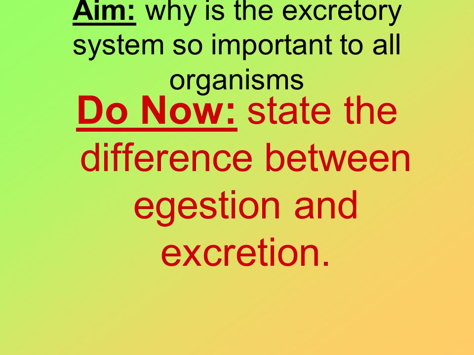 Aim: why is the excretory system so important to all organisms Do Now: state the difference between egestion and excretion.