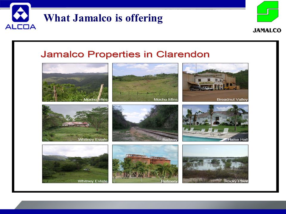 What Jamalco is offering