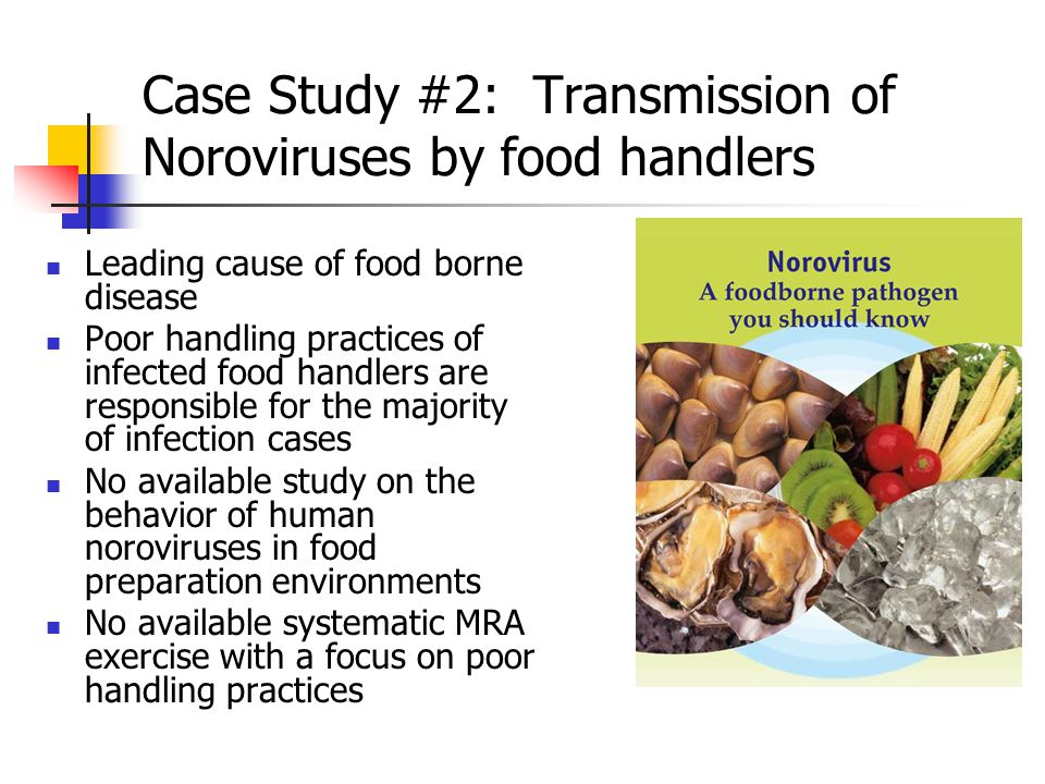 Case Study #2: Transmission of Noroviruses by food handlers Leading cause of food borne disease Poor handling practices of infected food handlers are responsible for the majority of infection cases No available study on the behavior of human noroviruses in food preparation environments No available systematic MRA exercise with a focus on poor handling practices
