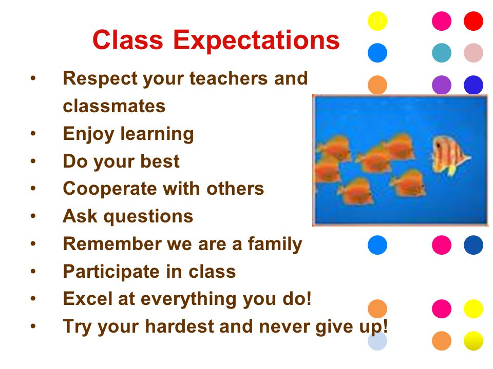 Class Expectations Respect your teachers and classmates Enjoy learning Do your best Cooperate with others Ask questions Remember we are a family Participate in class Excel at everything you do.