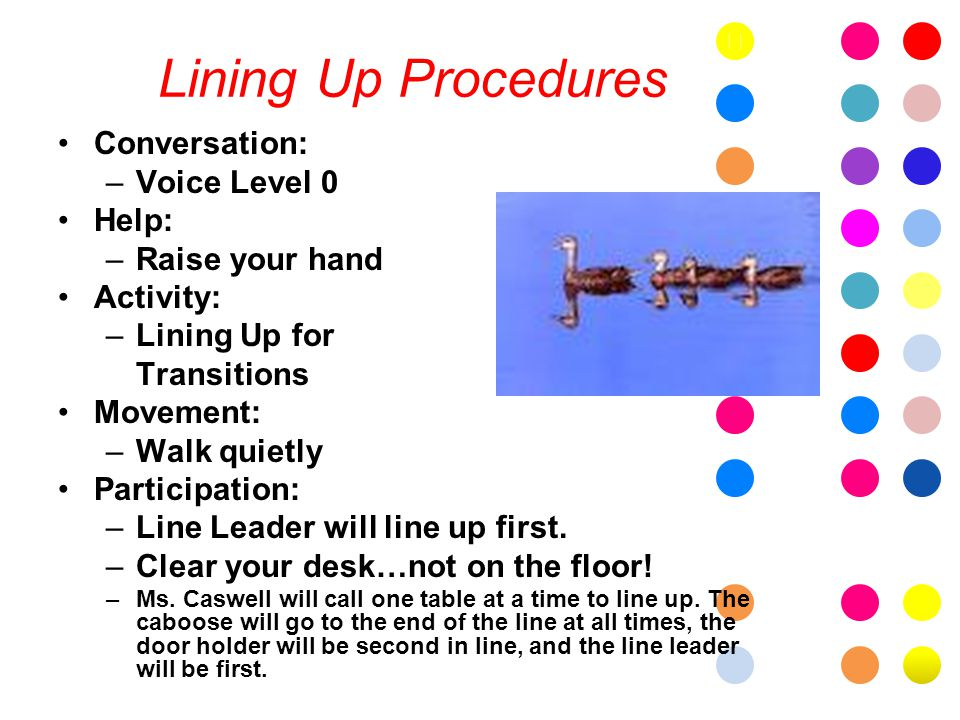 Lining Up Procedures Conversation: –Voice Level 0 Help: –Raise your hand Activity: –Lining Up for Transitions Movement: –Walk quietly Participation: –Line Leader will line up first.