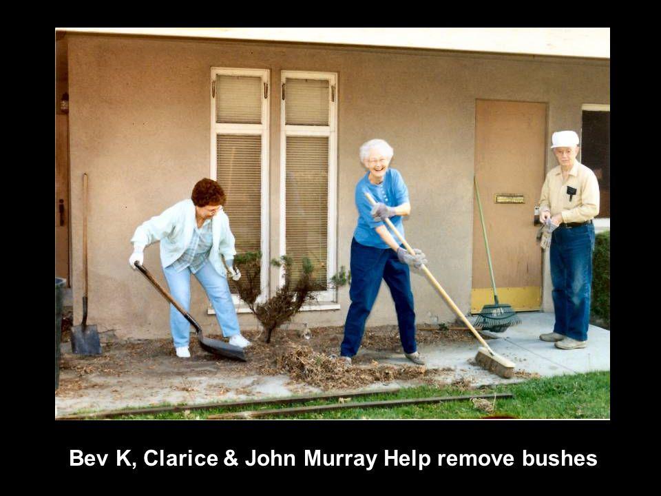 Bev K, Clarice & John Murray Help remove bushes