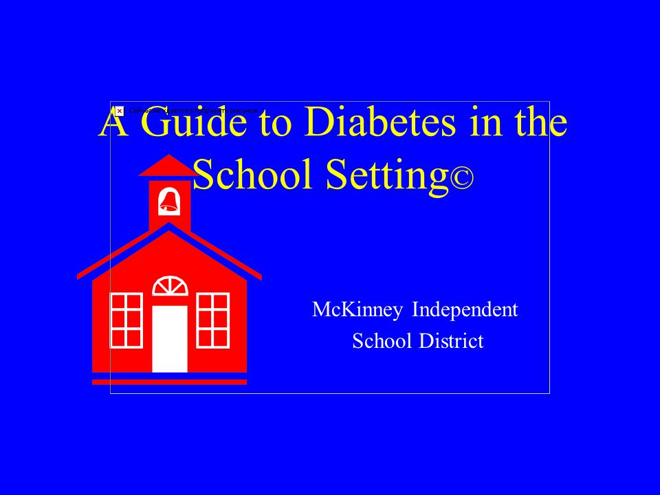 A Guide to Diabetes in the School Setting © McKinney Independent School District