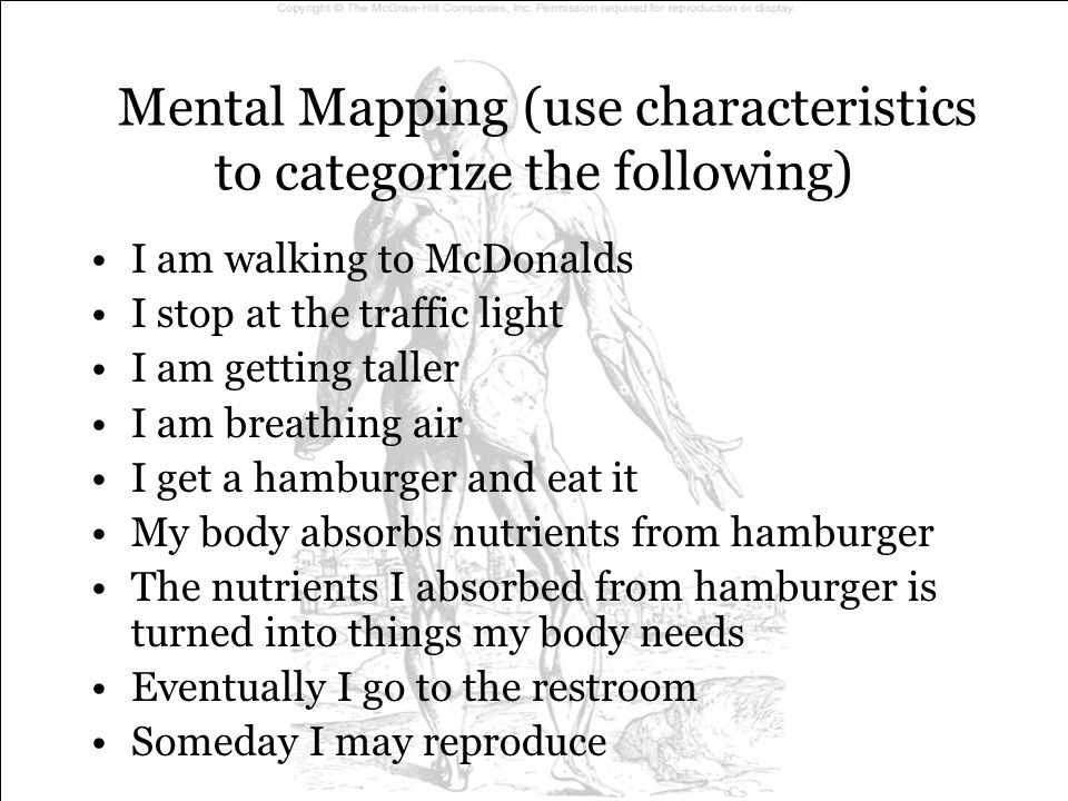 Mental Mapping (use characteristics to categorize the following) I am walking to McDonalds movement I stop at the traffic light responsiveness I am getting taller growth I am breathing air respiration I get a hamburger and eat it digestion My body absorbs nutrients from hamburger absorption The nutrients I absorbed from hamburger is turned into things my body needs assimilation Eventually I go to the restroom excretion Someday I may reproduce reproduction