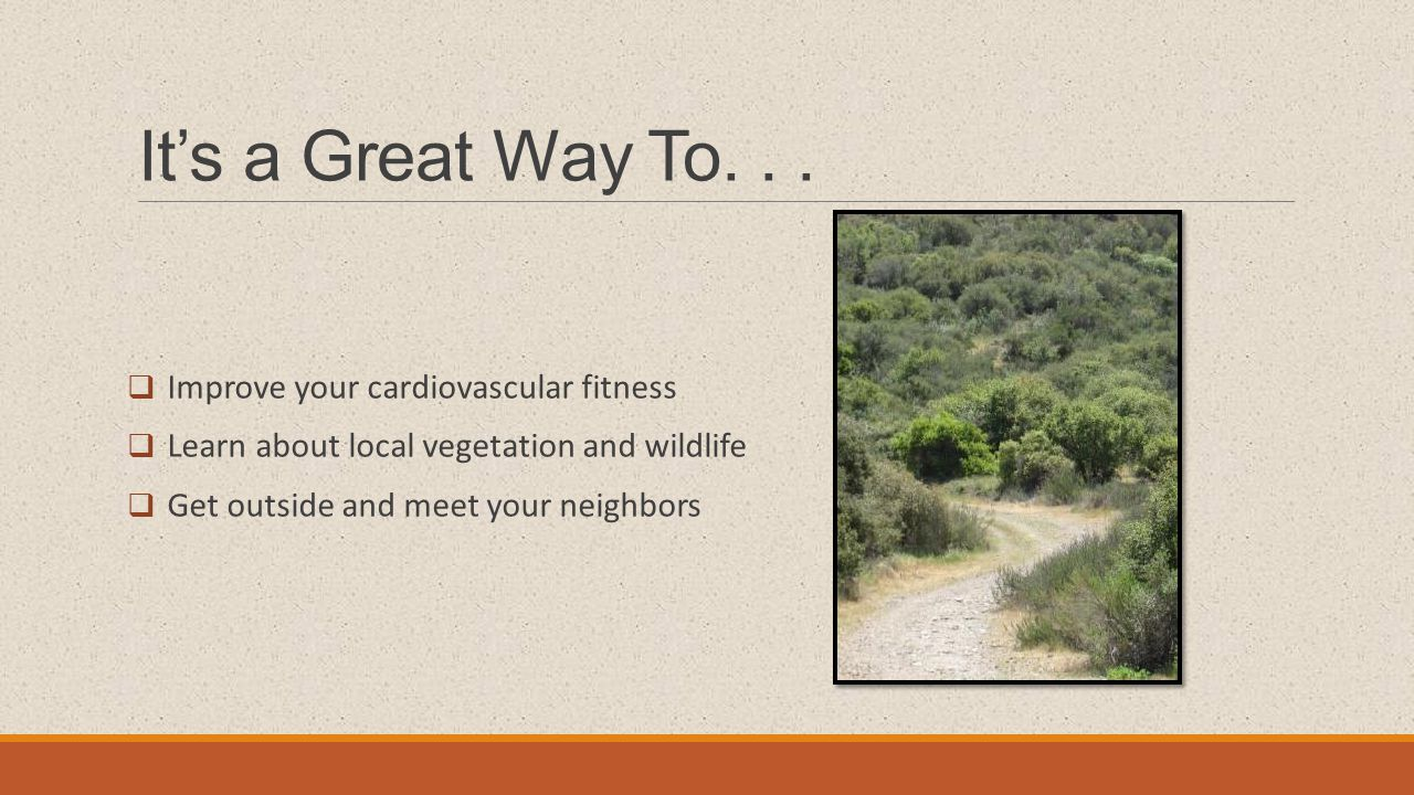 It's a Great Way To...  Improve your cardiovascular fitness  Learn about local vegetation and wildlife  Get outside and meet your neighbors