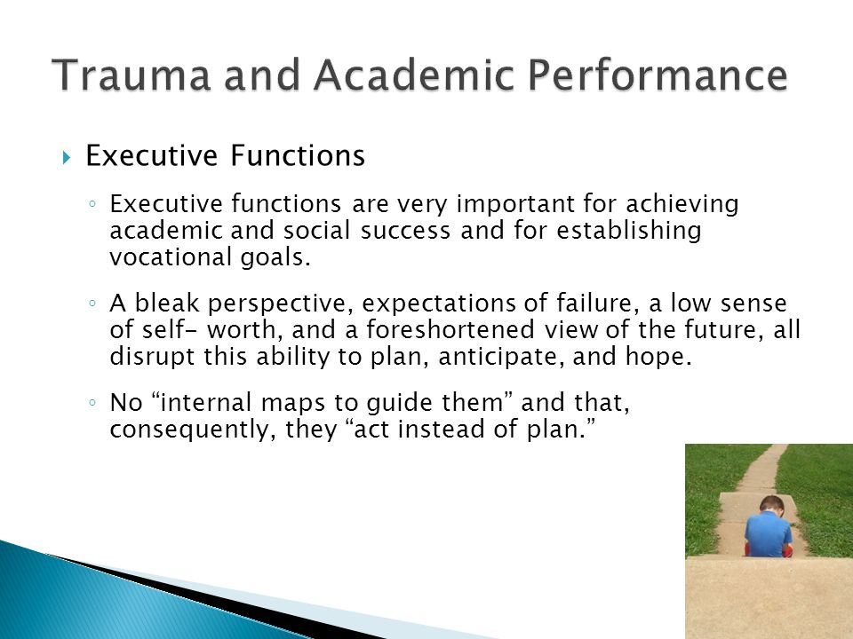  Executive Functions ◦ Executive functions are very important for achieving academic and social success and for establishing vocational goals.