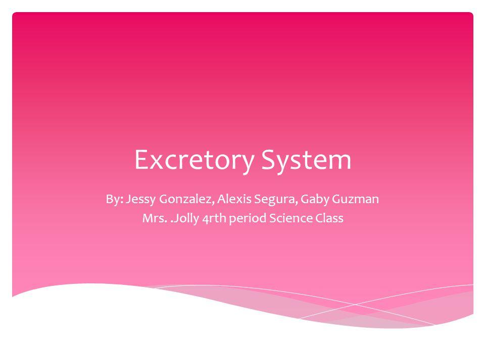 Excretory System By: Jessy Gonzalez, Alexis Segura, Gaby Guzman Mrs..Jolly 4rth period Science Class