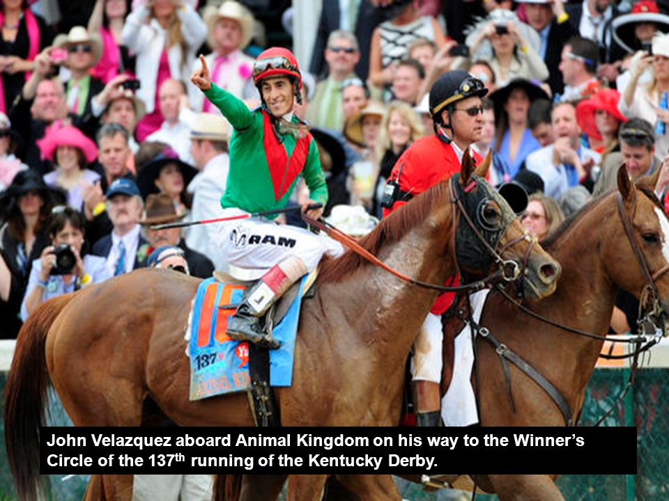 About the Kentucky Derby 6