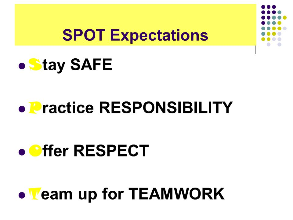 SPOT Expectations S tay SAFE P ractice RESPONSIBILITY O ffer RESPECT T eam up for TEAMWORK