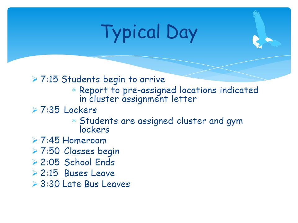  7:15Students begin to arrive  Report to pre-assigned locations indicated in cluster assignment letter  7:35 Lockers  Students are assigned cluster and gym lockers  7:45 Homeroom  7:50 Classes begin  2:05 School Ends  2:15 Buses Leave  3:30 Late Bus Leaves Typical Day