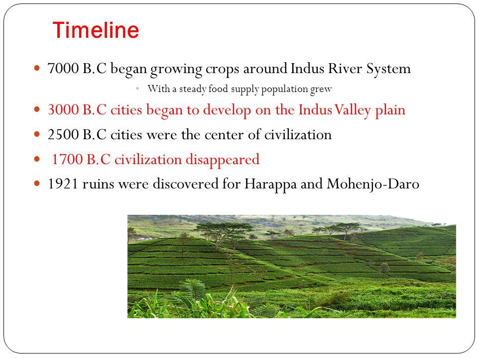 Timeline 7000 B.C began growing crops around Indus River System With a steady food supply population grew 3000 B.C cities began to develop on the Indu