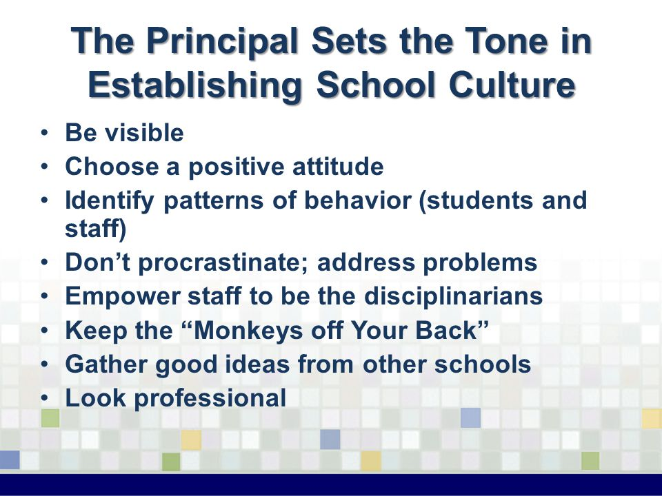 The Principal Sets the Tone in Establishing School Culture Be visible Choose a positive attitude Identify patterns of behavior (students and staff) Do