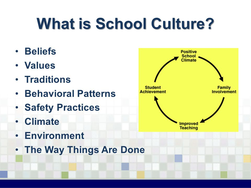 Guide to the Professional Management of Students Your Elementary School Somewhere, USA 11111 Purpose of this Guide Clarification of the principal's expectations Intentional teaching of positive behaviors to students (and staff) Empowerment of professional staff Template for PowerPoint is available upon request