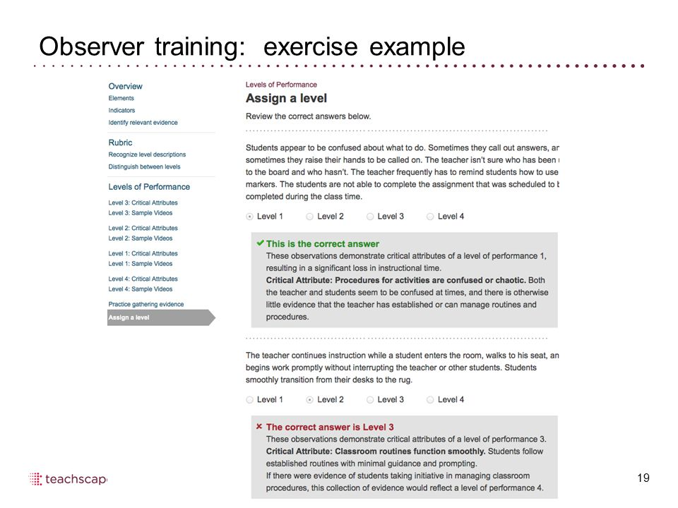 Observer training: exercise example 19