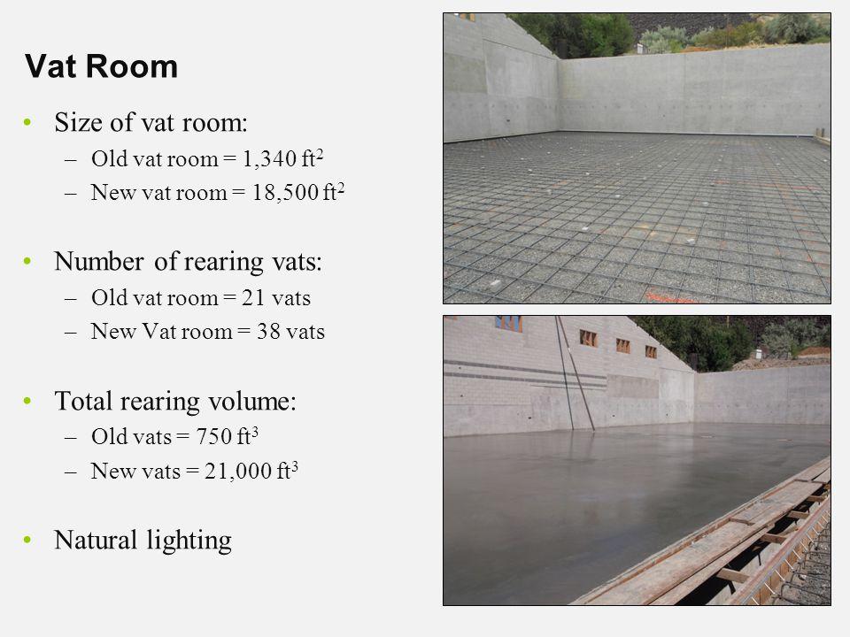 Vat Room Size of vat room: –Old vat room = 1,340 ft 2 –New vat room = 18,500 ft 2 Number of rearing vats: –Old vat room = 21 vats –New Vat room = 38 vats Total rearing volume: –Old vats = 750 ft 3 –New vats = 21,000 ft 3 Natural lighting
