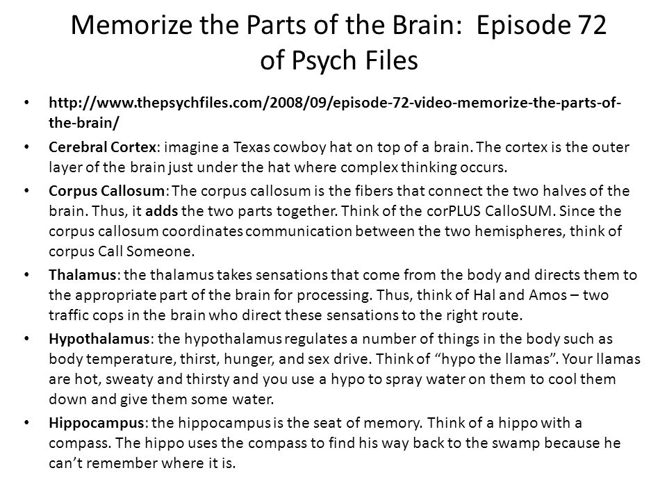 Memorize the Parts of the Brain: Episode 72 of Psych Files http://www.thepsychfiles.com/2008/09/episode-72-video-memorize-the-parts-of- the-brain/ Cer