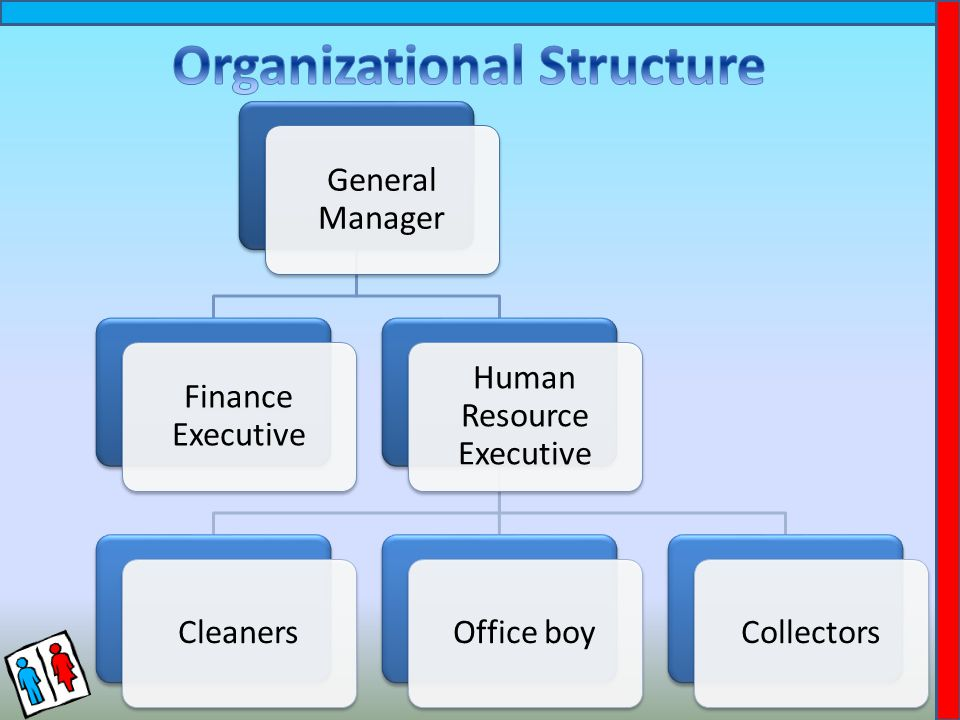 General Manager Finance Executive Human Resource Executive CleanersOffice boyCollectors