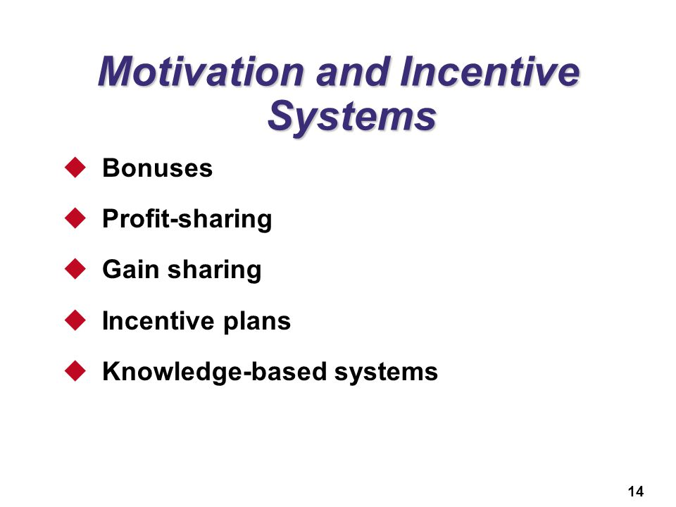 14 Motivation and Incentive Systems  Bonuses  Profit-sharing  Gain sharing  Incentive plans  Knowledge-based systems