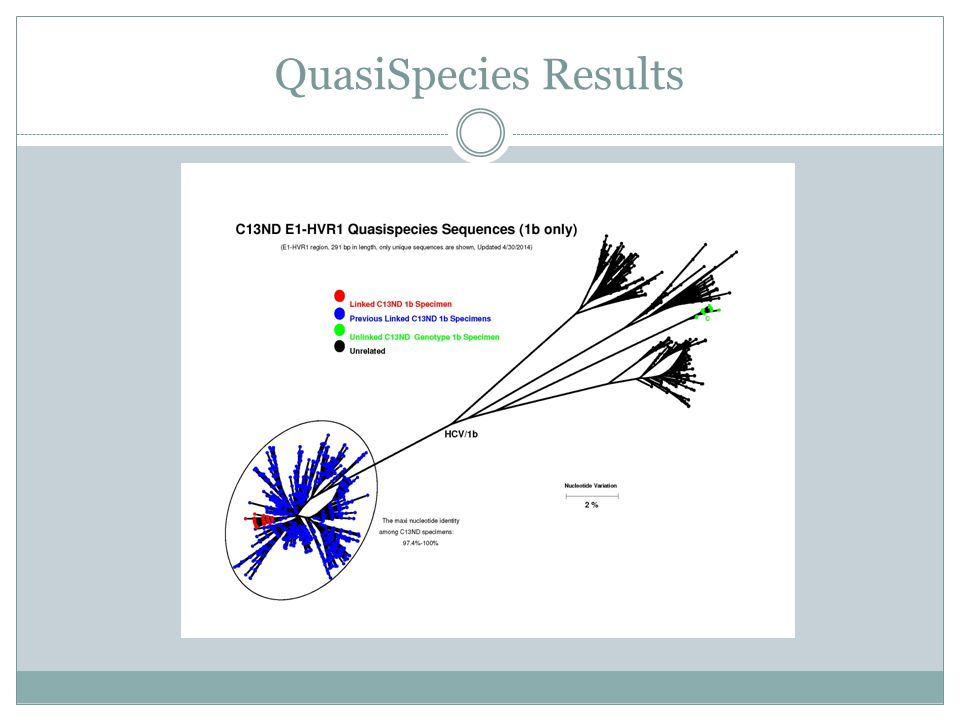 QuasiSpecies Results